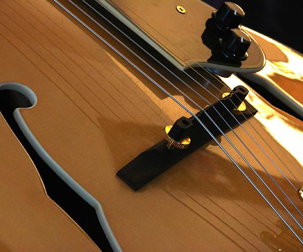 Bio: Image of guitar